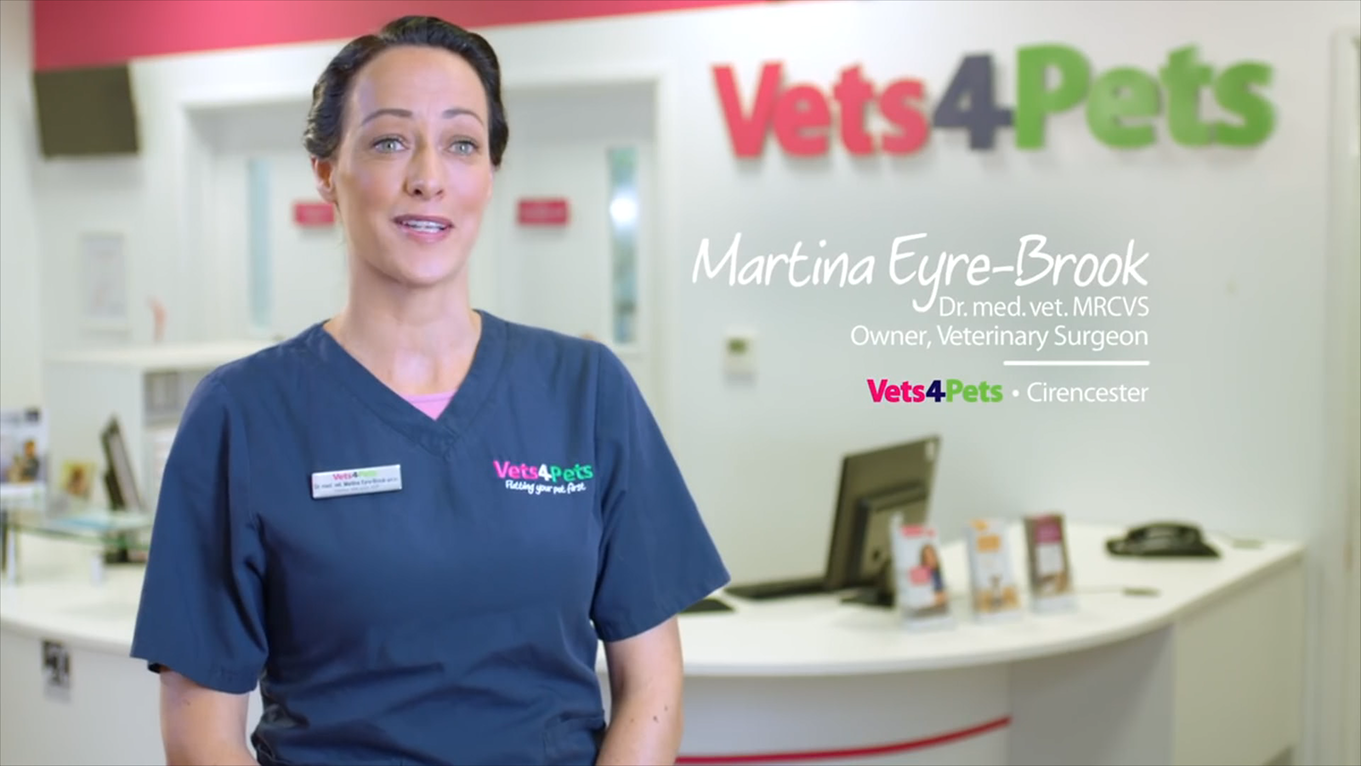 VETS FOR PETS – TV COMMERCIAL